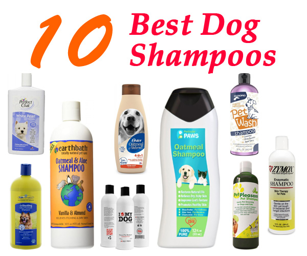 Best-Shampoos-for-Dogs-pets