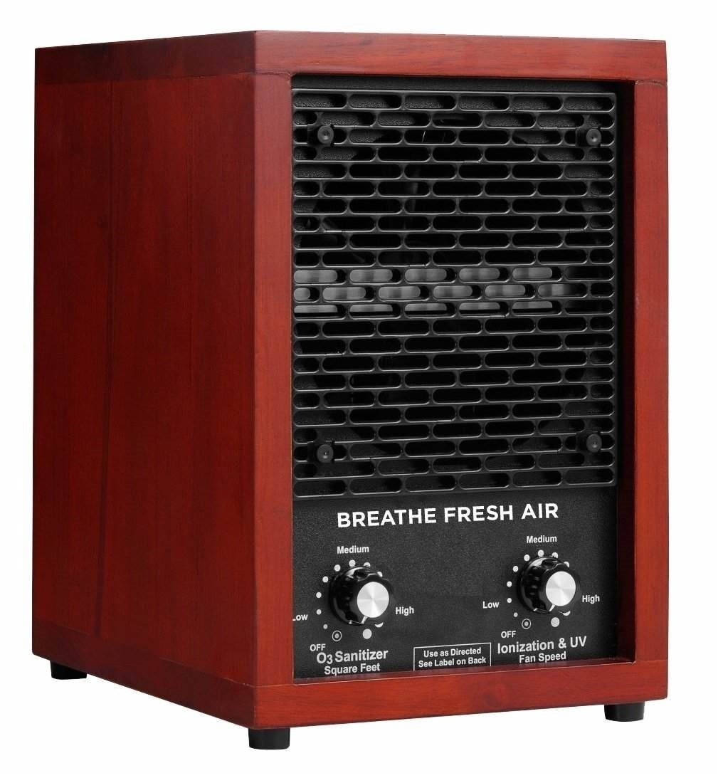 Best Air Ionizers