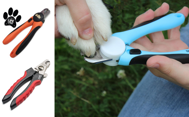 Top 10 Best Dog Nail Clippers – Reviews of Dog Nail Grinders & Trimmers