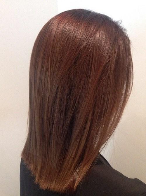 Straight and Sleek Chestnut Bob – Medium Straight Hairstyle for Girls