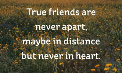 20 Short Friendship Quotes to Share With Your Best Friend - Cute ...   Friend  quotes distance, Long distance friendship quotes, Short friendship quotes
